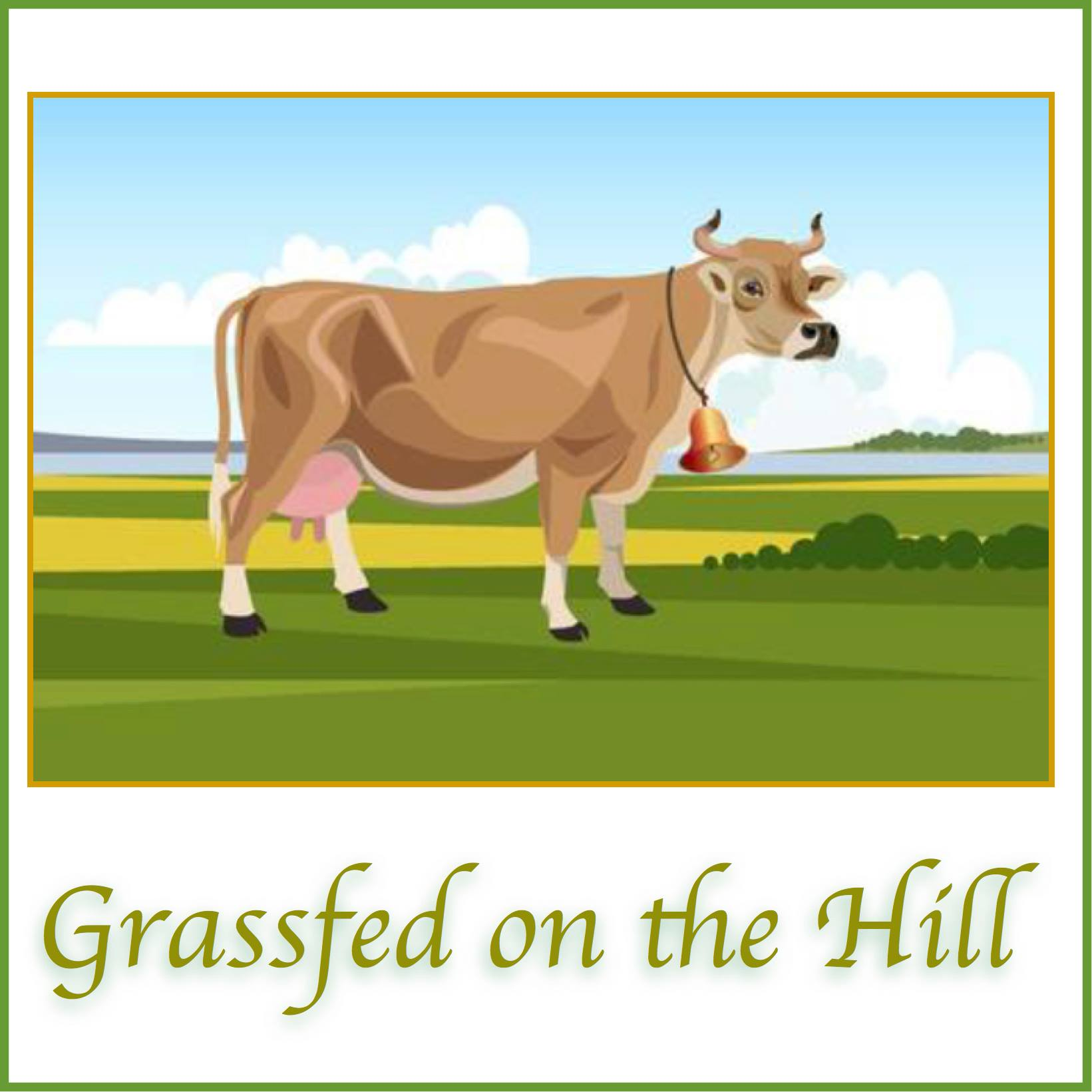Grassfed on the Hill